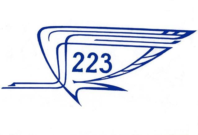 223 Летный Отряд
